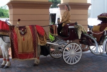 horse-vidaiceremony-carriage