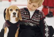 beagle-graciehanna-andersson