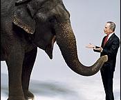 elephant-and-mayor-b