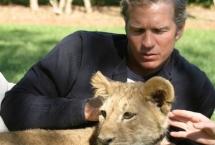 lion-cub-vogue