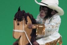 mikey-on-pony-msnbc