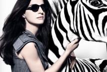 zebra-c-herra-2010
